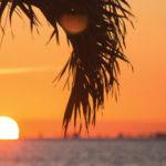 Warren Averett Florida economic nexus image